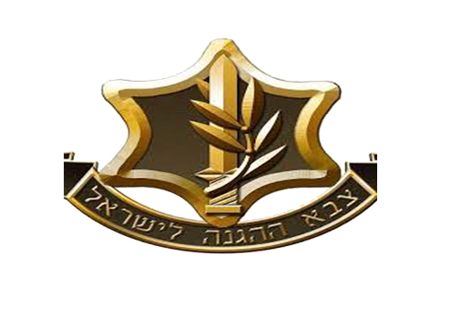 Israel Defense Forces (IDF)